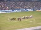 HSV - Dortmund_7