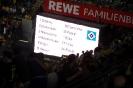 Dortmund - HSV_6